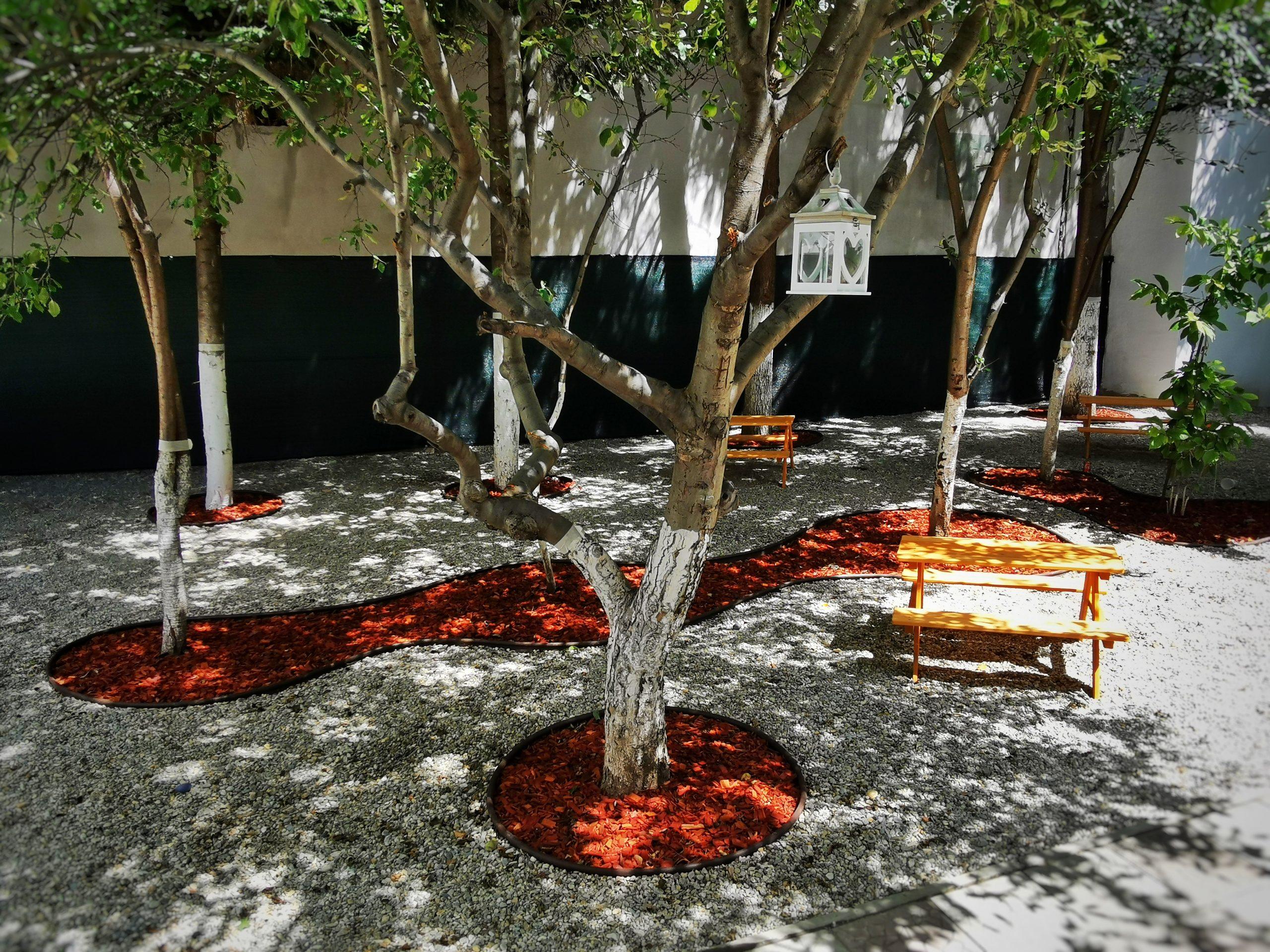 Centru Educațional Grădiniță Curte Exterior